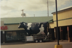 Glen's Country Market, Ruthie The Cow