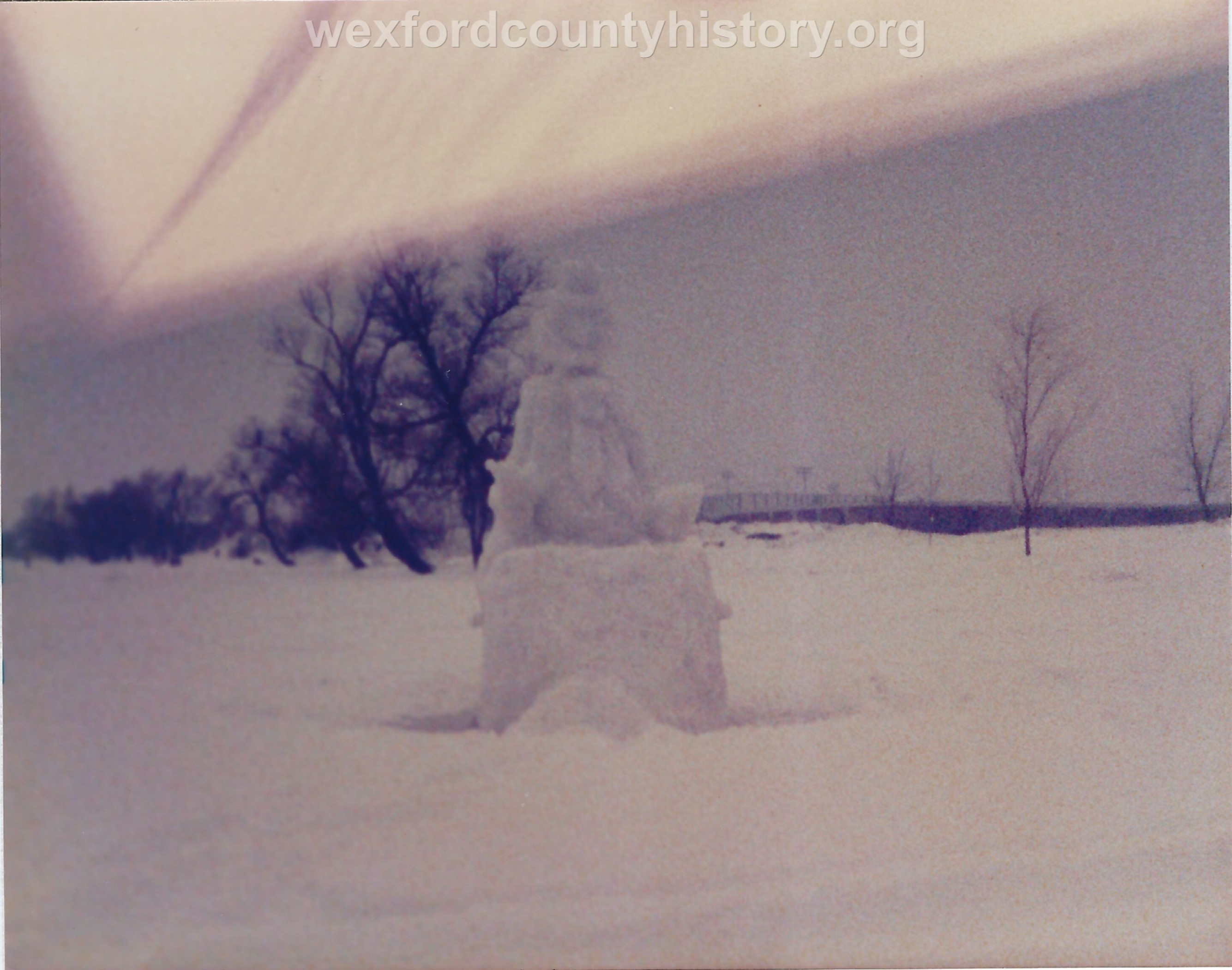 Cadillac-Recreation-Ice-Sculptures-On-Lake-Cadillac-For-Snowmobile-Festival-18