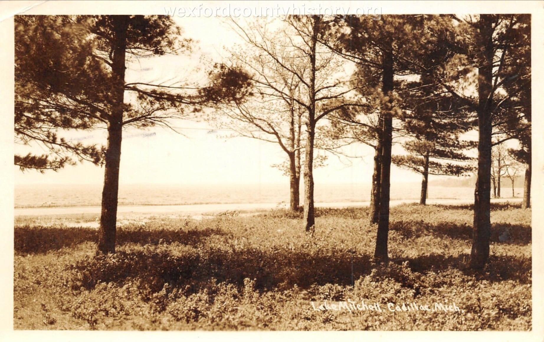 Lake Mitchell
