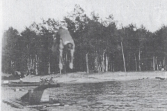 Diving In The Lake