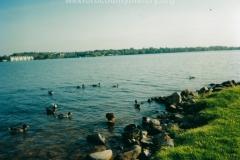 Lake Cadillac