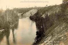Manistee River Near Manton