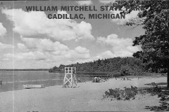 Lake Mitchell Beach