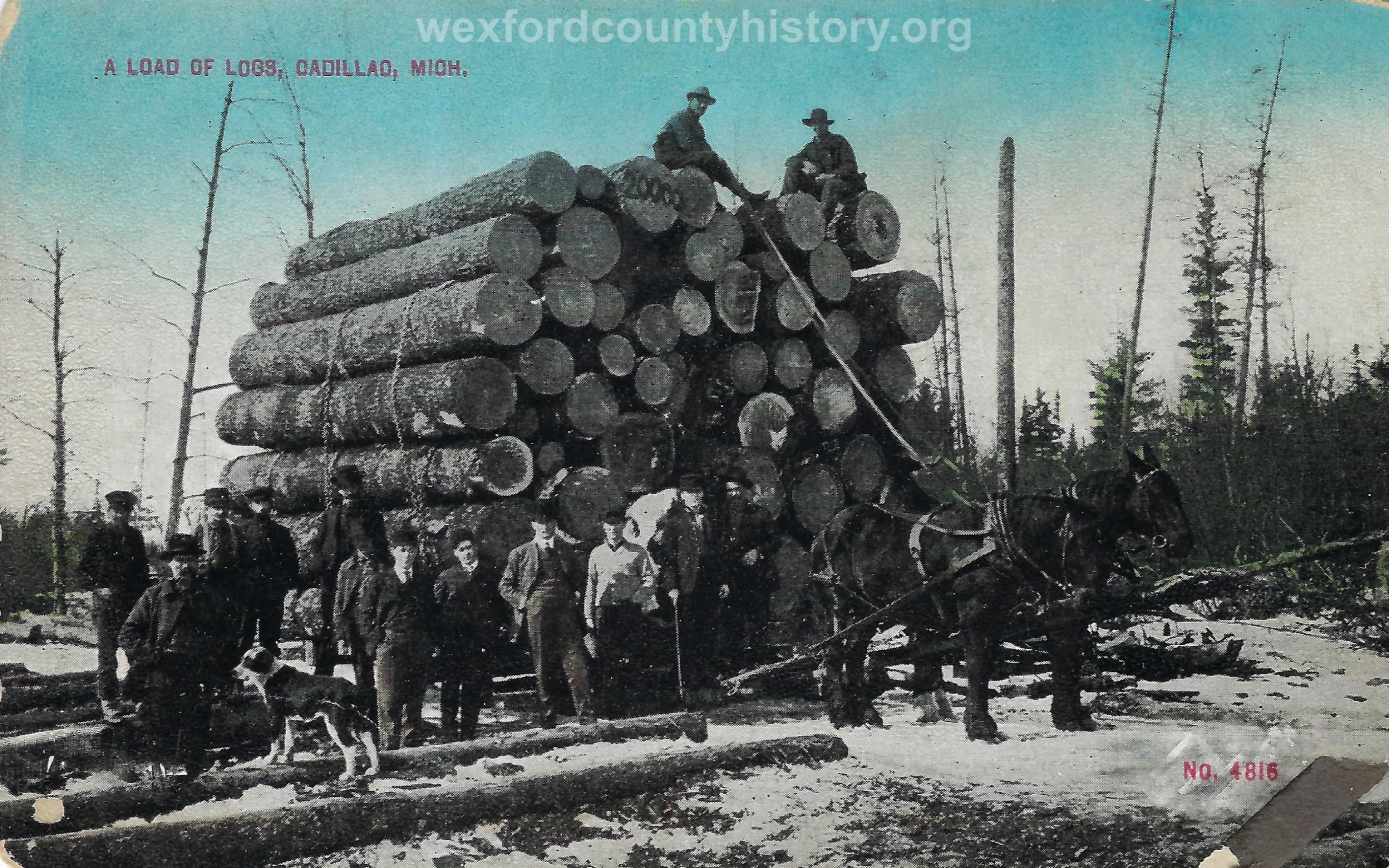 Cadillac-Lumber-Load-Of-Logs-Cadillac-Michigan-2