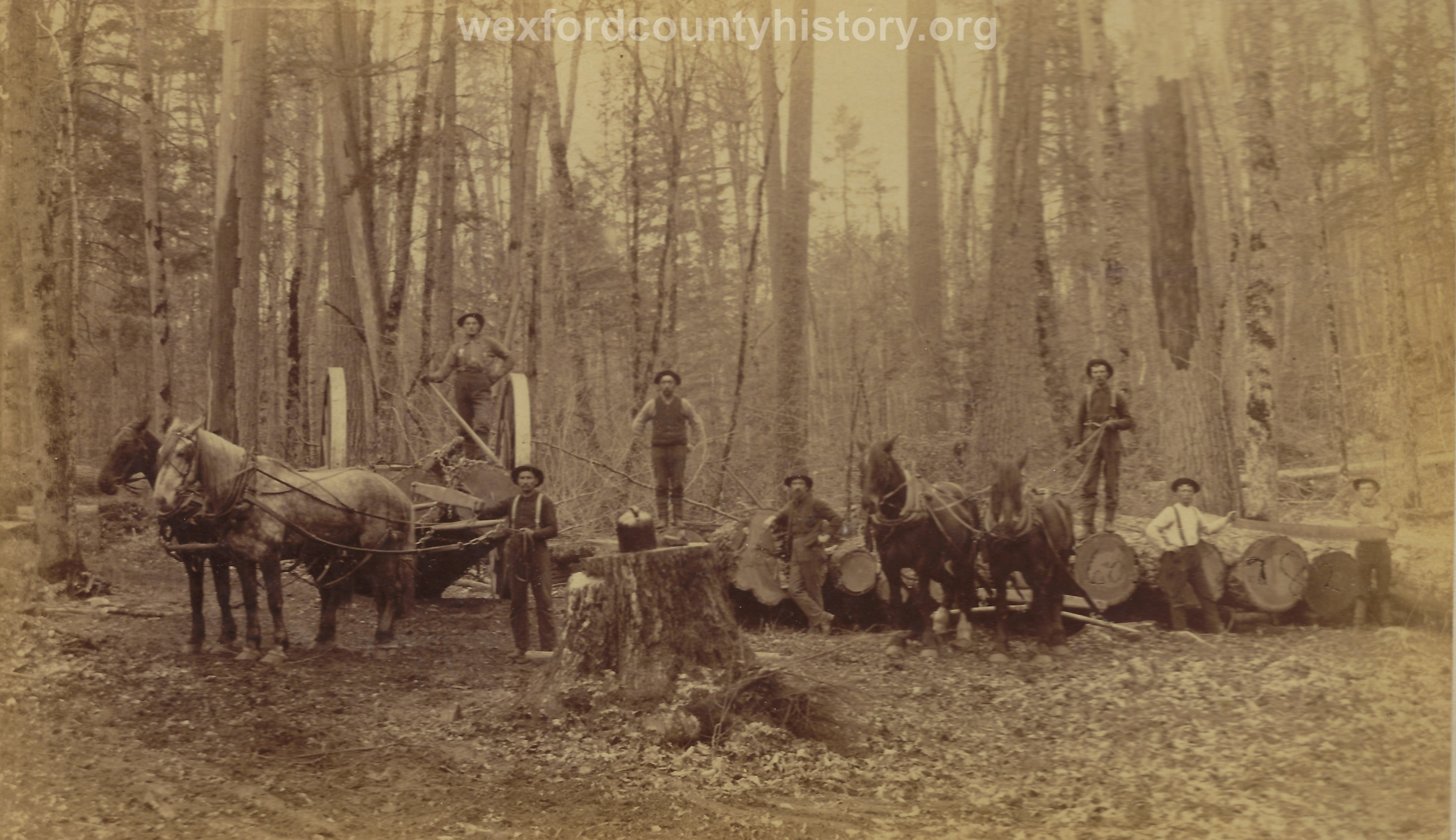 Cadillac-Lumber-Misc-Lumber-Scene-1-44