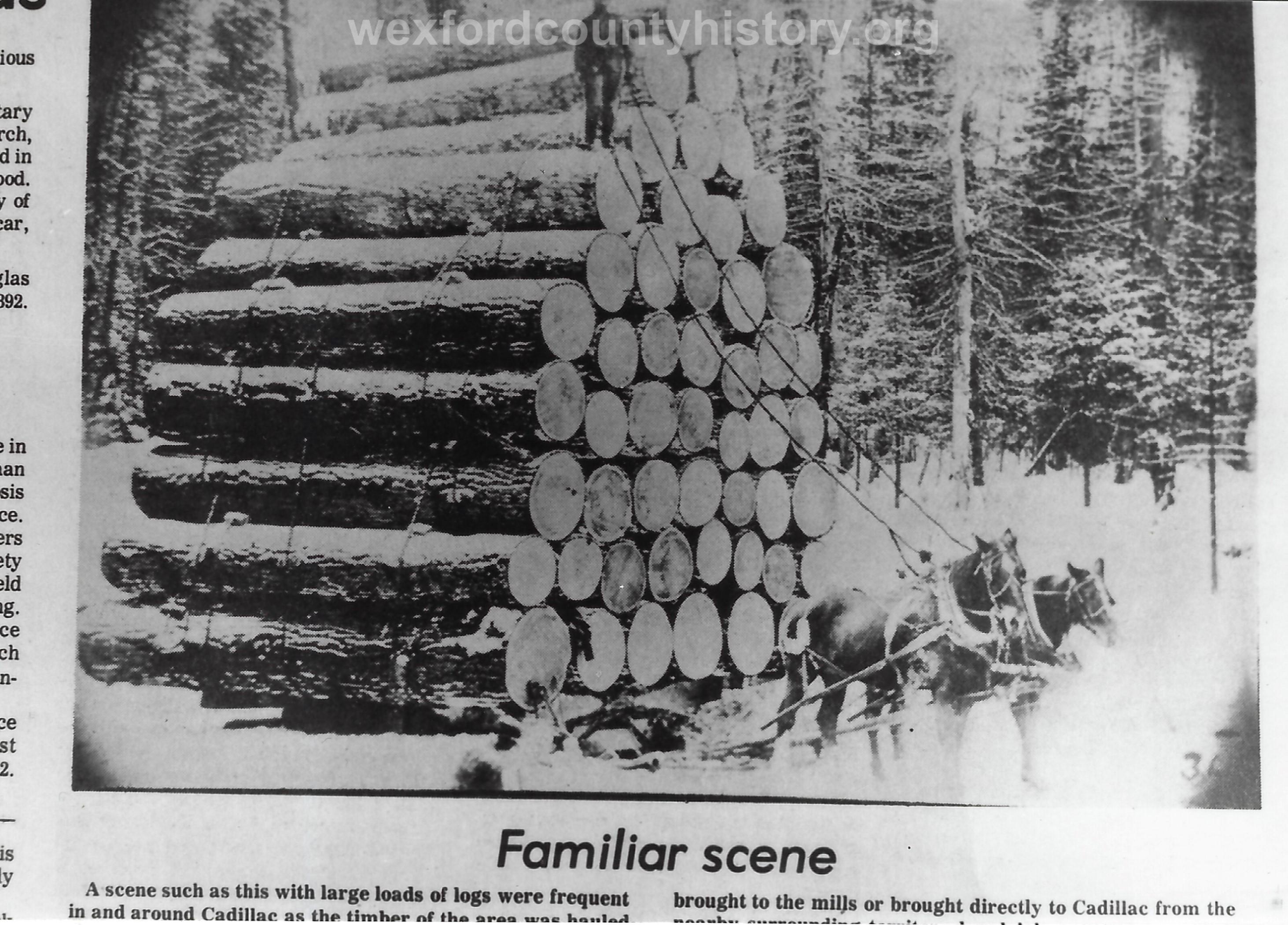 Cadillac-Lumber-Misc-Lumber-Scene-1-45