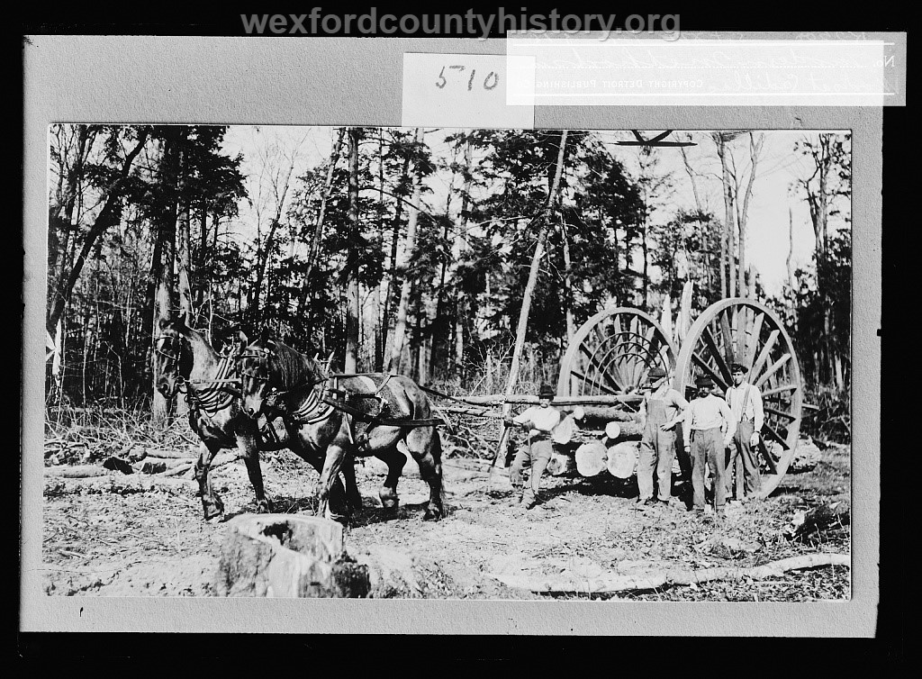 Cadillac-Lumber-Modern-Methods-In-Woods-At-Cadillac-Michigan-from-LOC