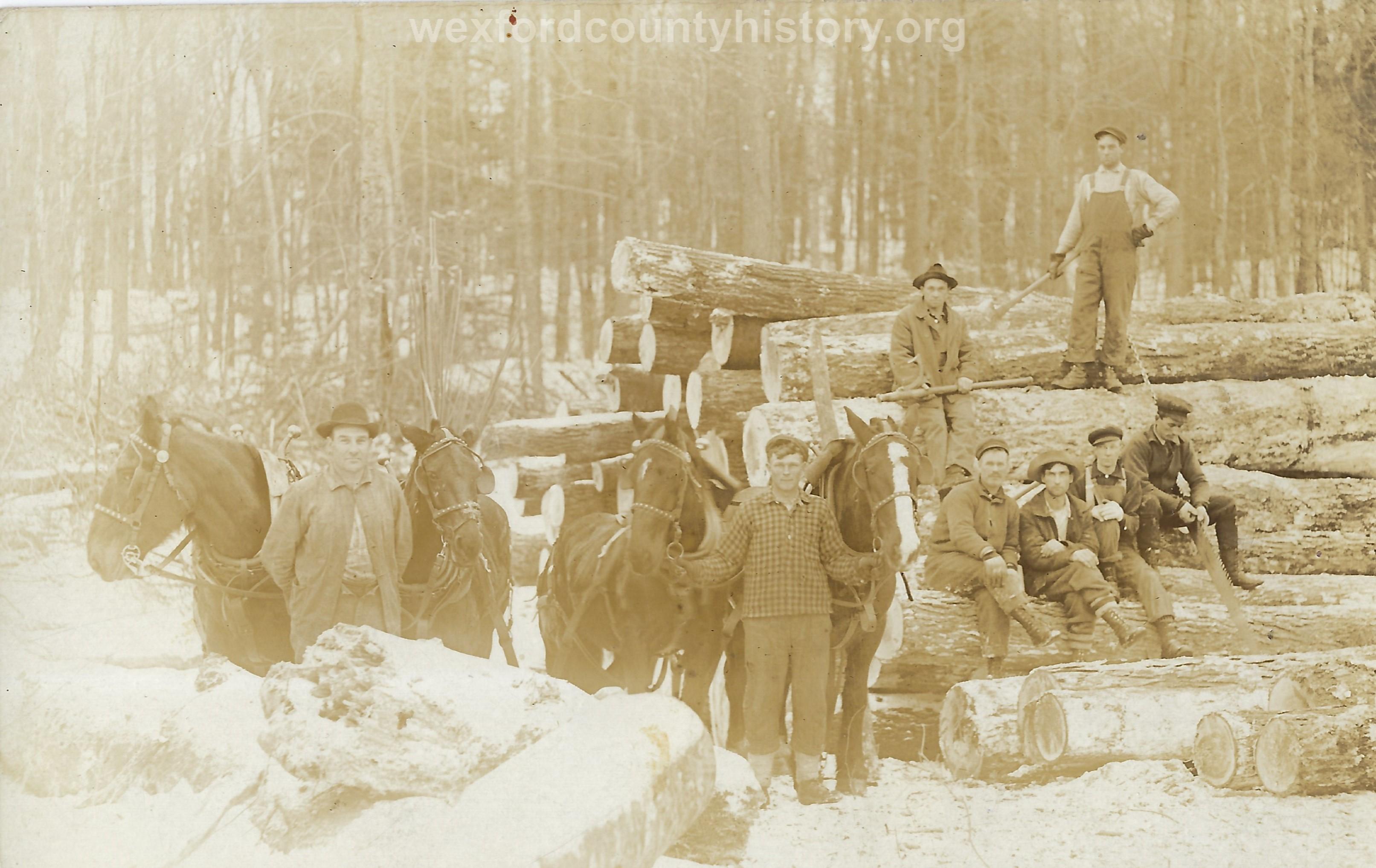 Cadillac-Lumber-Posing-On-Logs