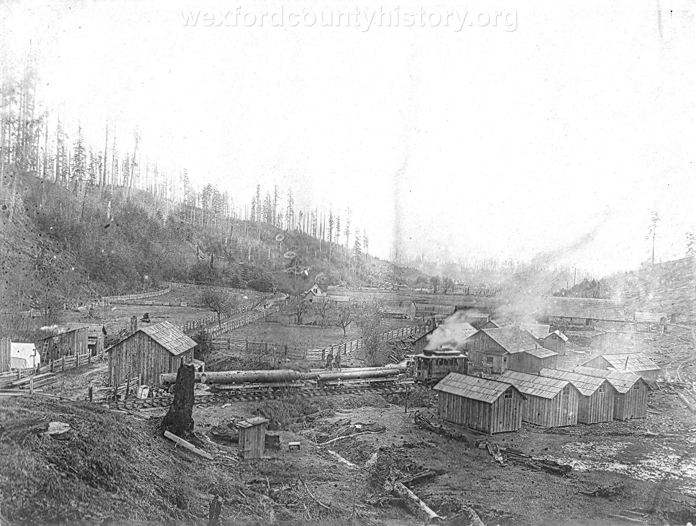 Wexford-County-Lumber-Timber-Harvest-Circa-1890s-17