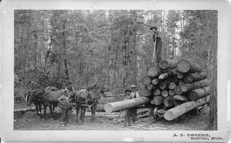 Rail Car Loaded with Lumber