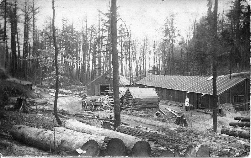 View of a Typical Logging Camp