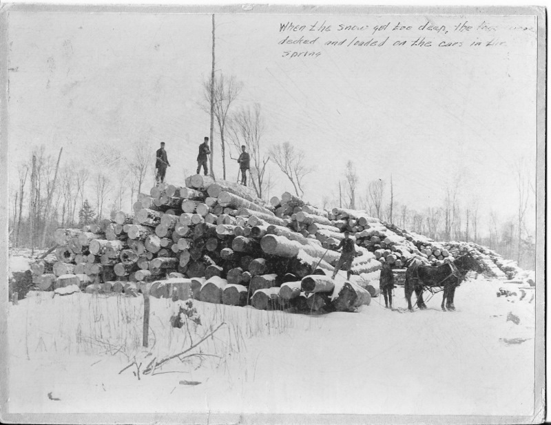 Logs Stacked to Load on Rail Cars