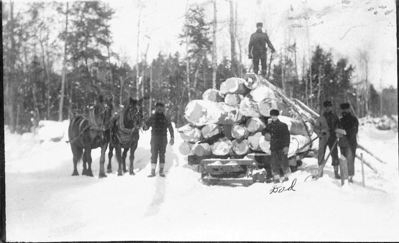 Logs Loaded for Transport