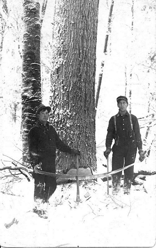 Sours Camp Timber Men
