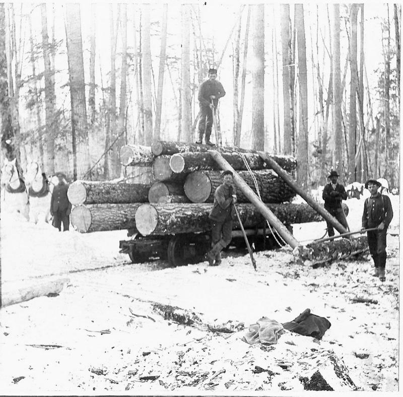 Loading Logs on the Rail Cars