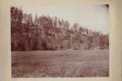 Cadillac-Lumber-Hill-of-Logs-In-The-Wexford-County-Countryside-1