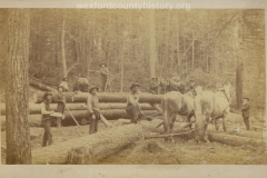Cadillac-Lumber-Horse-Team-Gets-Ready-To-Pull-A-Huge-Log-While-Lumberjacks-Pose
