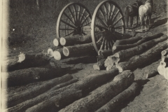 Cadillac-Lumber-Horse-Team-Pulling-Logs
