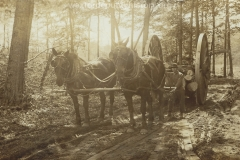 Cadillac-Lumber-Horses-Moving-Logs-On-Michigan-Wheels-Over-Very-Muddy-Northern-Michigan-Roads