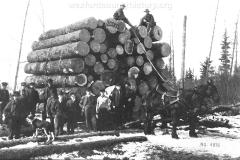 Cadillac-Lumber-Load-Of-Logs-Cadillac-Michigan