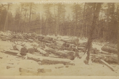 Cadillac-Lumber-Logs-In-The-Snow