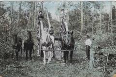 Cadillac-Lumber-Lumbering-Operations-Near-Cadillac-Michigan-2