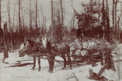 Cadillac-Lumber-Lumberjack-With-Two-Horse-Team-Pulling-Logs-By-Henderson-Camp