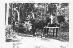 Cadillac-Lumber-Misc-Lumber-Scene-1-10