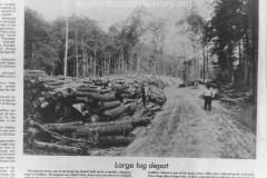 Cadillac-Lumber-Misc-Lumber-Scene-1-12