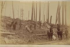 Cadillac-Lumber-Misc-Lumber-Scene-1-33