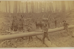 Cadillac-Lumber-Sawing-A-Log