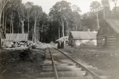 Wexford-County-Lumber-Murphy-Diggins-Lumber-Camp