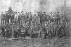 Wexford-County-Lumber-Timber-Harvest-Circa-1890s-21