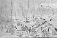 Logging Camp Scene