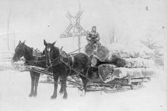 Team of Horses Removing Logs