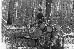 Removing Logs from the Forest