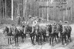 Sours Logging Camp in Henderson Twp