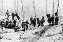 Timber Harvest Crew