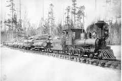 Muskrat Lake & Clam River Railroad in Missaukee County