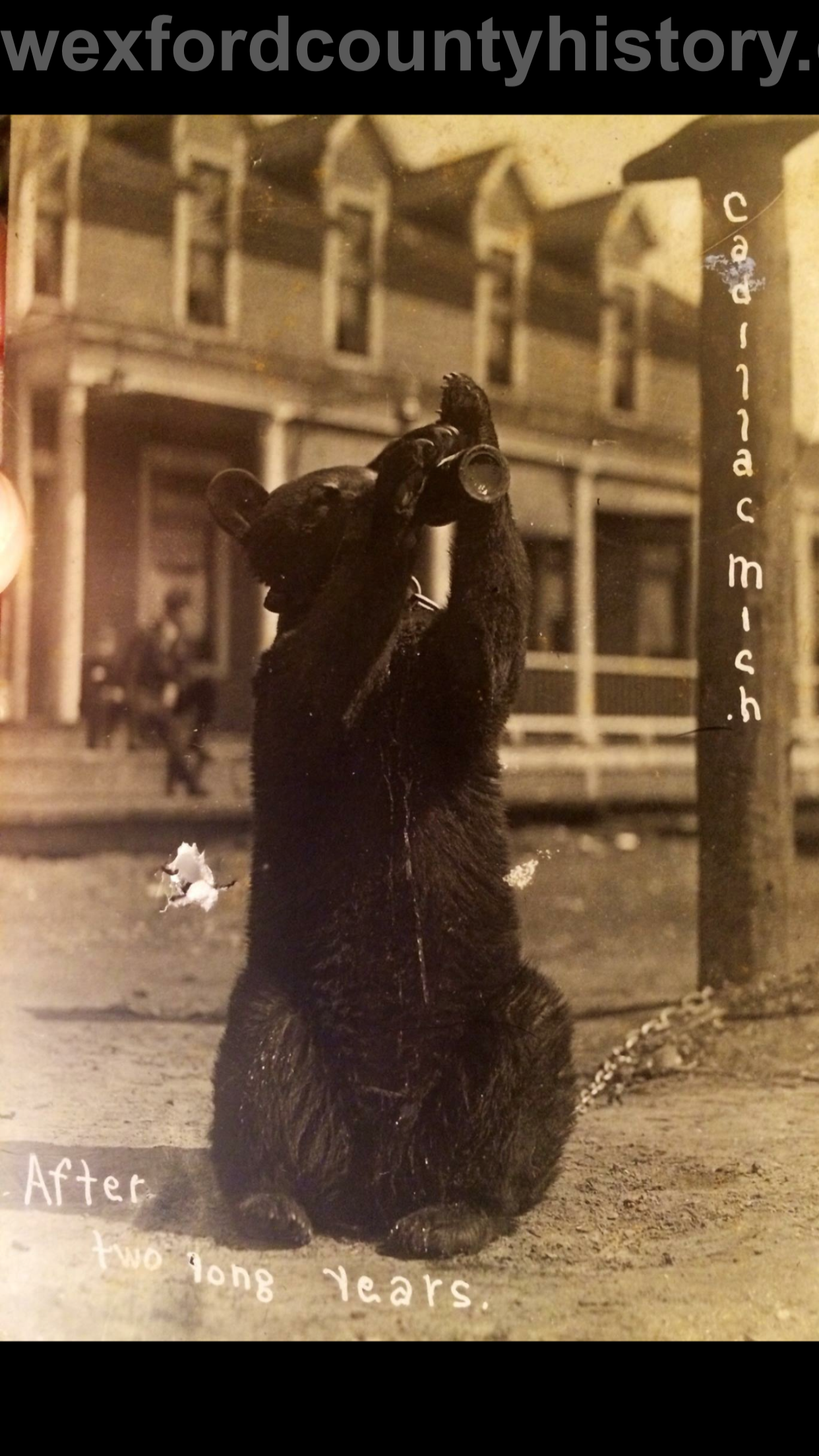 Cadillac-Random-Cadillac-Postcard-4