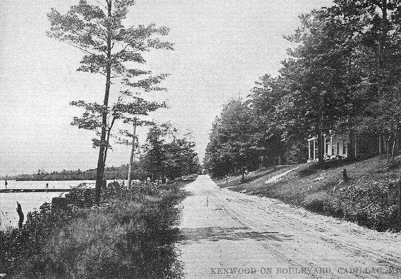 North Shore of Lake Cadillac