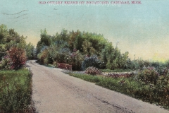 Cadillac-Recreation-Old-Outlet-Bridge-The-North-Boulevard-roadway-was-constructed-by-the-Mitchell-family.-This-1907-or-earlier.-photo-was-taken-approaching-the-Black-Creek-2