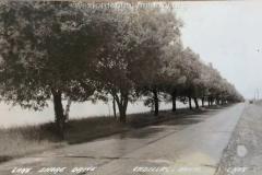 Cadillac-Street-Lake-Shore-Drive