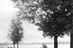Lake Cadillac Roadway