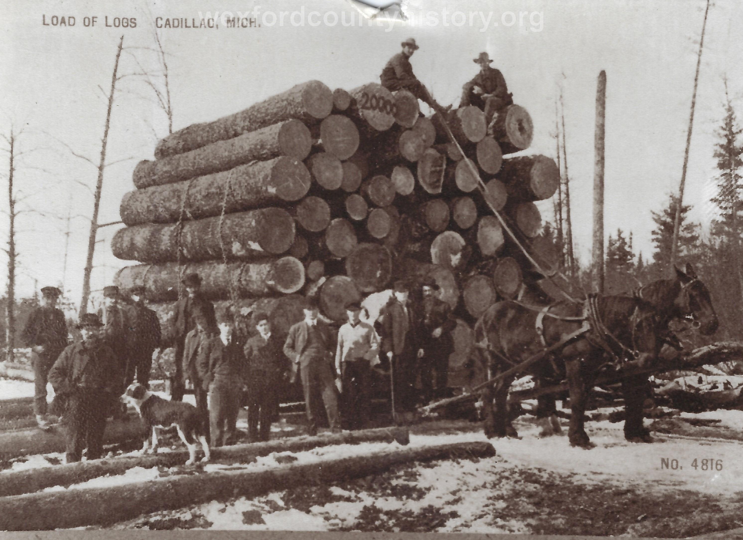 1_Cadillac-Lumber-Load-Of-Logs-Cadillac-Michigan