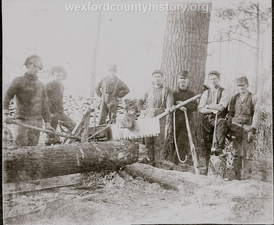 Cadillac-Lumber-Cutting-Timber