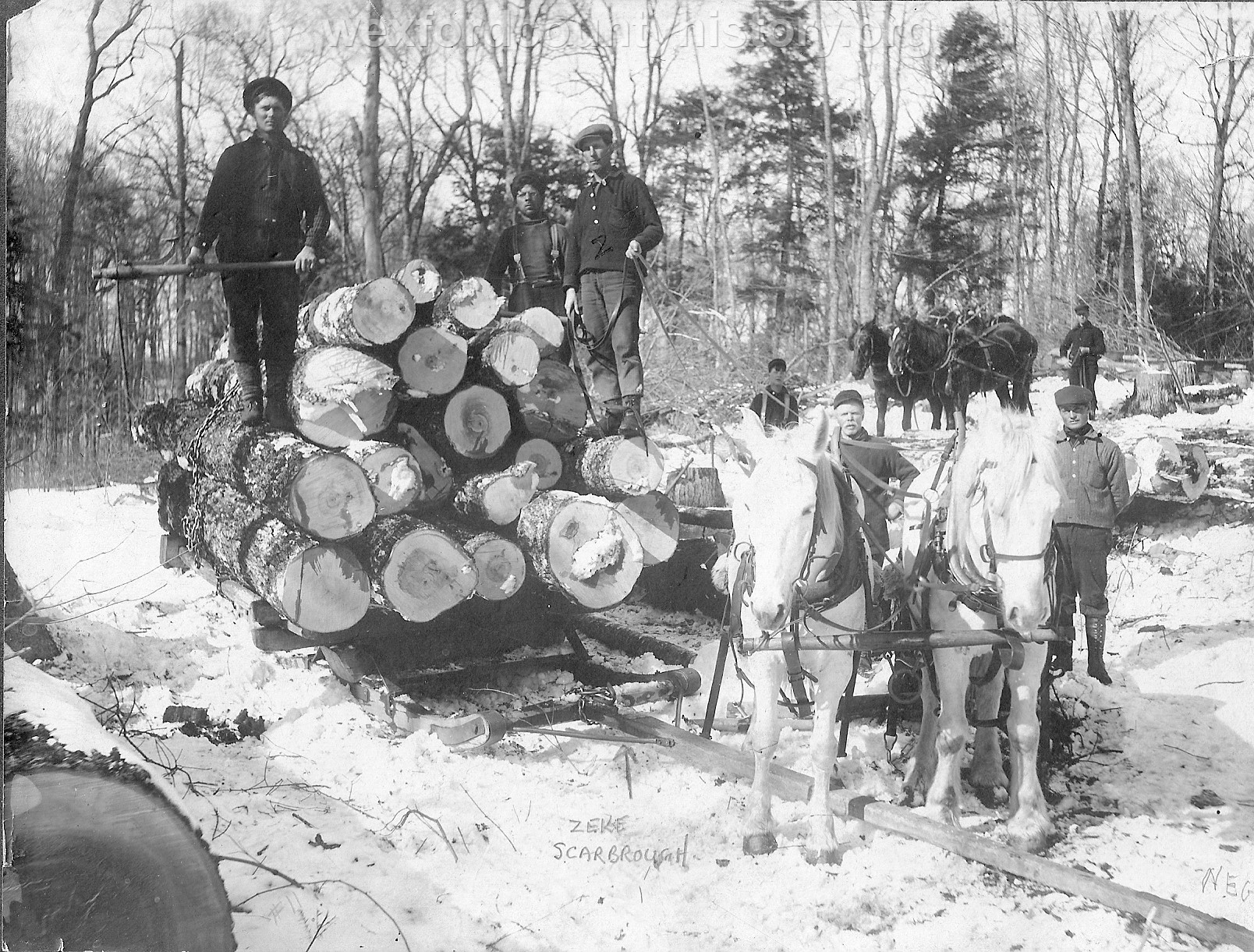 Cadillac-Lumber-Loading-Logs-For-Transport