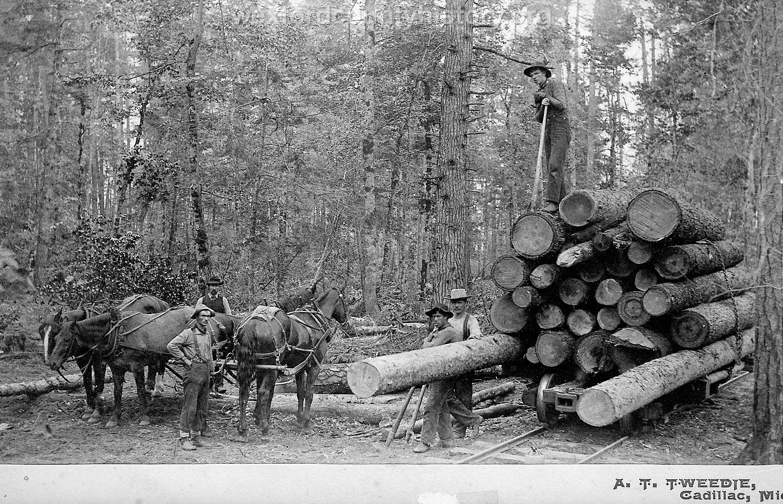 Cadillac-Lumber-Loading-Logs-Onto-Rail-Car