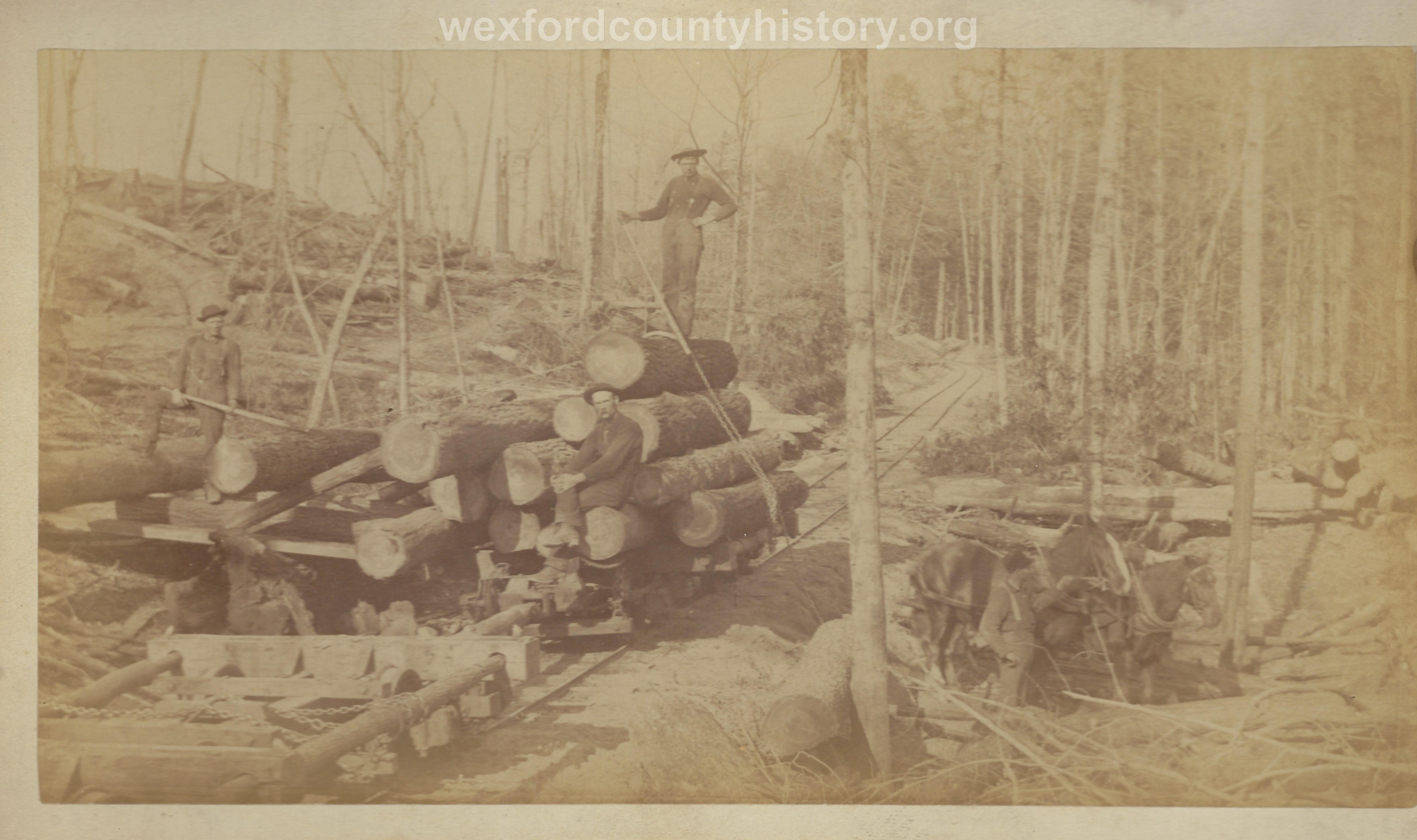 Cadillac-Lumber-Loading-Logs-Onto-Railroad-Car-For-Transport