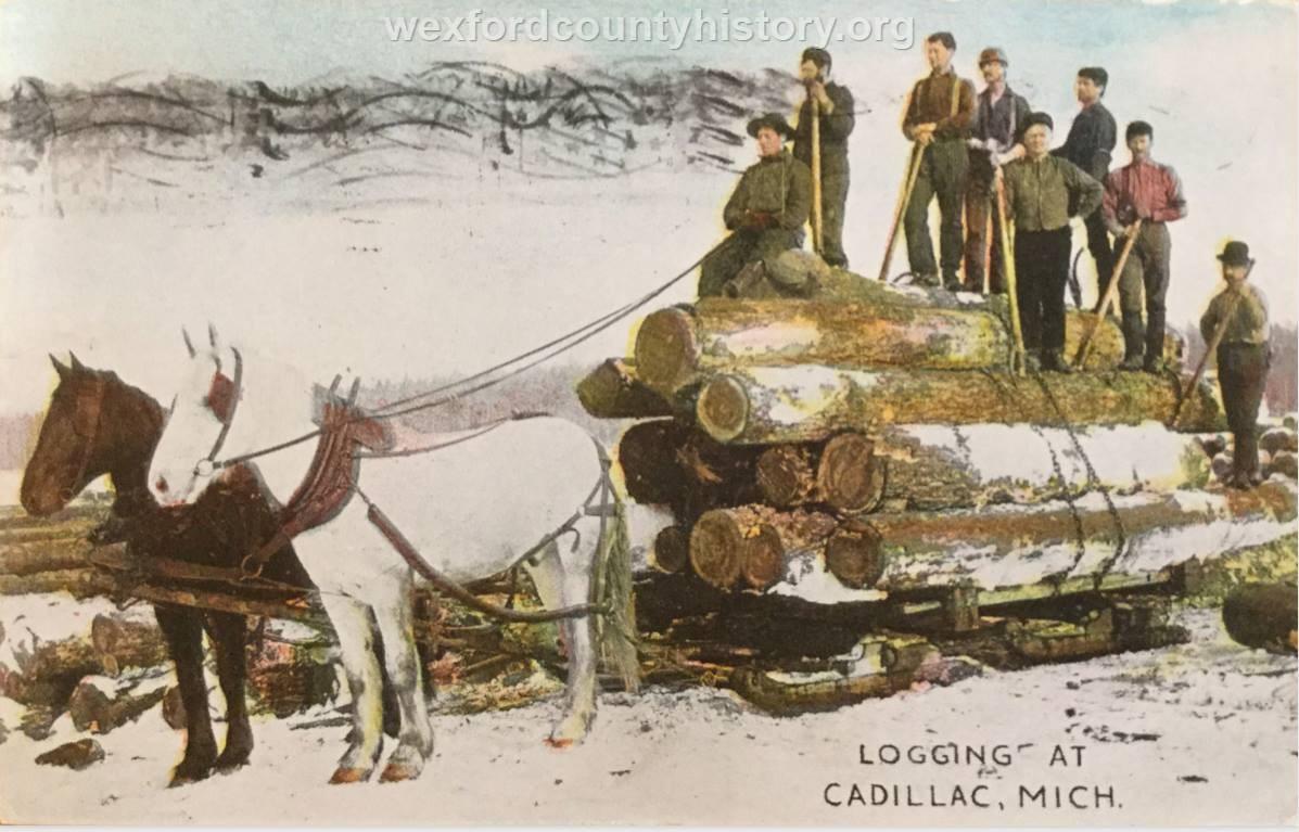 Cadillac-Lumber-Logging-At-Cadillac-Michigan